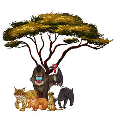 Isolated picture wild animals under tree vector