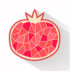 Pomegranate part flat design vector