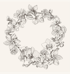 wreath flower orchid plumeria blossom cherry vector image