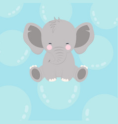 Elephant on bubble vector