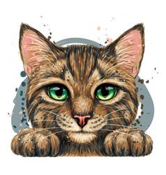 kitten wall sticker vector image