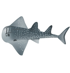 shark ray vector image