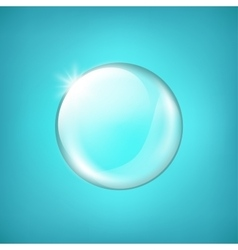 Transparent glass sphere with glares and highlight vector