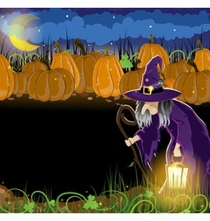 Wicked witch and Halloween pumpkins vector