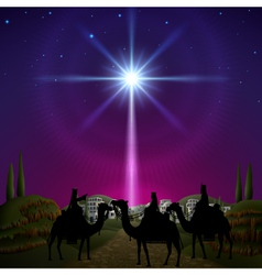 Three Wise Men in Bethlehem vector image