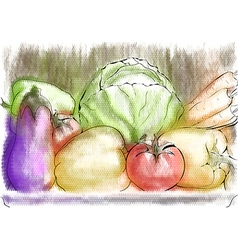 autumn vegetables vector image