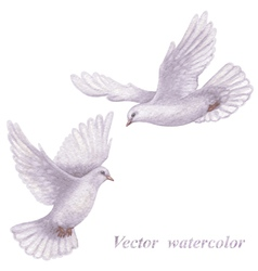Flying doves vector