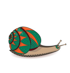 Snail green and orange invertebrate animals of vector