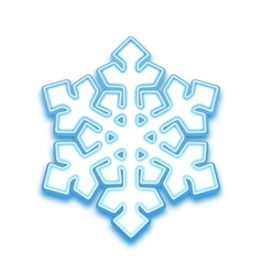 Three-demention snowflake vector