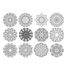 set of elegant calligraphic circular lace design vector image vector image