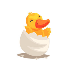Cute duckling baby hatching from egg vector
