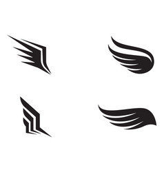 Flacon wing template icons design vector