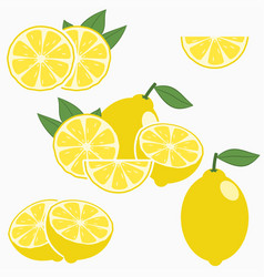 lemon citrus fruit with leaf vector image