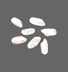 Rice grains isolated on dark background vector