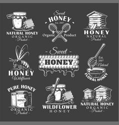 set vintage honey labels vector image