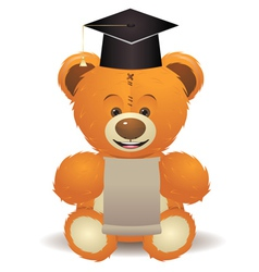 Teddy Bear in Graduation Hat vector image