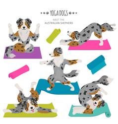 Yoga dogs poses and exercises australian shepherd vector