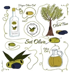 A large set of isolated colorful olive elements vector image vector image