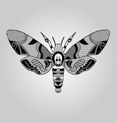 moth acherontia atropos black and white drawing vector image