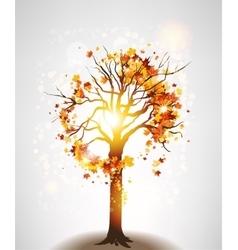 Autumn maple tree and sunlight vector