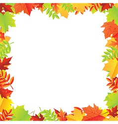 Colorful Autumn Leafs Frame vector image vector image