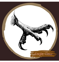 Eagle claw vector image