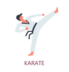 fighting karate japanese sport oriental combat art vector image