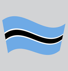 Flag of botswana waving on gray background vector