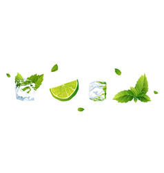 set lime ice cube and mint vector image
