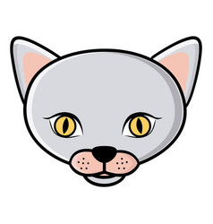 color face cat icon vector image