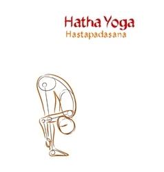 Hatha Yoga Hastapadasana vector image