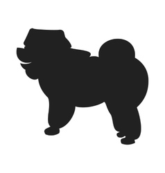 Chow Black Silhouette vector image vector image