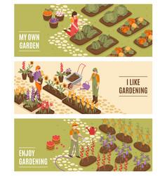 Gardening isometric banners set vector