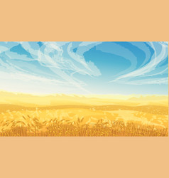 Golden color field with wheat blue sky vector