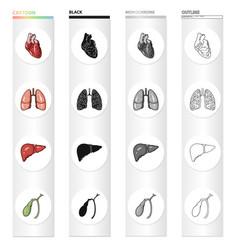 heart internal organ lung of a person liver vector image