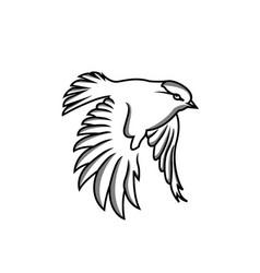logo design hummingbird technology vector image