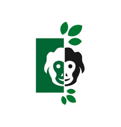 monkey jungle logo design vector image