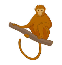 monkey sitting on a branch icon cartoon style vector image