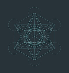 monocrome outline sacred metatron cube vector image