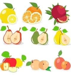 Set of fruits lemon apple orange pomegranate vector