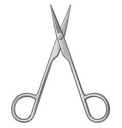small scissors vector image