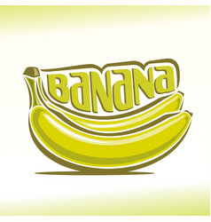 bananas branch vector image