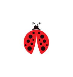 Beauty bug icon vector
