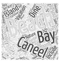 Caneel Bay Word Cloud Concept vector