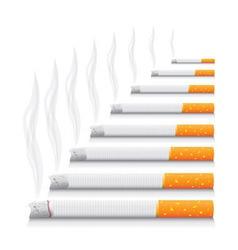 Cigarettes vector image vector image