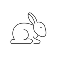 Rabbit or bunny line outline icon vector
