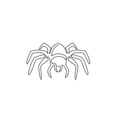 single continuous line drawing big wild spider vector image