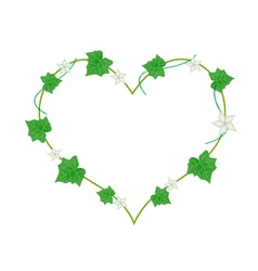 White Flowers and Leaves in Heart Shape vector image