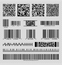 business barcodes and qr codes vector image