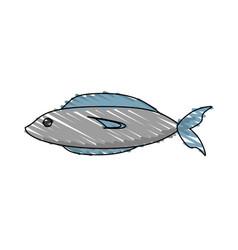 drawing fish fresh food picnic shadow vector image